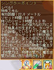 09シングラーポイント.jpg